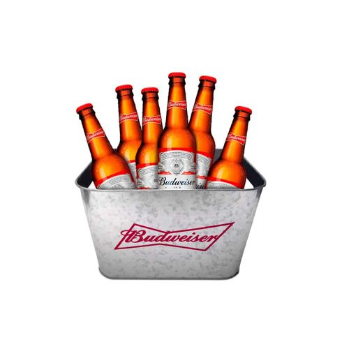Pack_6_Budweiser_Bucket_5