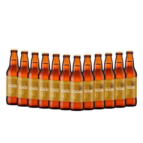 Pack_12_Cervezas_DelPuerto_Aconcagua--1-