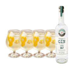 1_Gin-4_copas